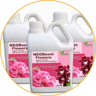 Horti NEOBoost Flowers The content is organic, the soil remains fertile, anyway! NEOBoost Flowers Fertilizer is included in the category of organic fertilizer which is effective in improving soil quality. The amino acids, nutrients, and vitamins contained in it are able to fertilize the soil optimally. It is perfect for those of you who want to provide special care for roses and orchids! The content of natural ingredients in it also functions to make plants more resistant to pests and diseases. In addition, this fertilizer is able to stimulate and accelerate flower growth as well as prevent it from falling off easily. If you like plants and still want to maintain soil fertility, NEOBoost Flowers can be an option.