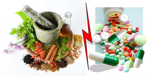 Perbedaan obat herbal dan obat kimia sintetis