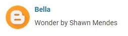 Wonder Shawn Mendes Request