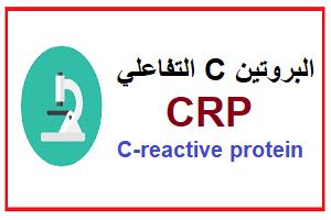 البروتين سي التفاعلي CRP