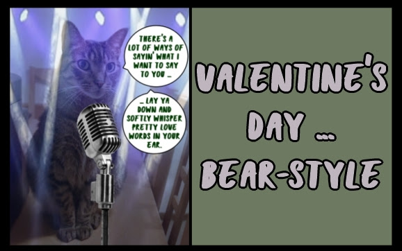 Valentine's Day ... Bear-style