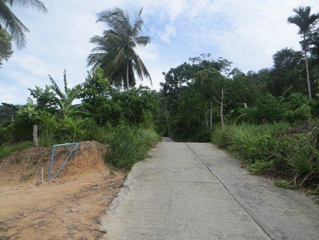 Дорога на верх в джунгли