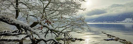 www.dietz.ch - Winter am Zugersee bei Baumgarten