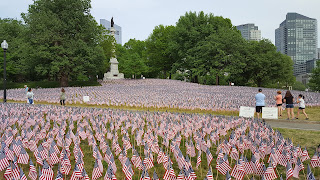 another view of the flag garden