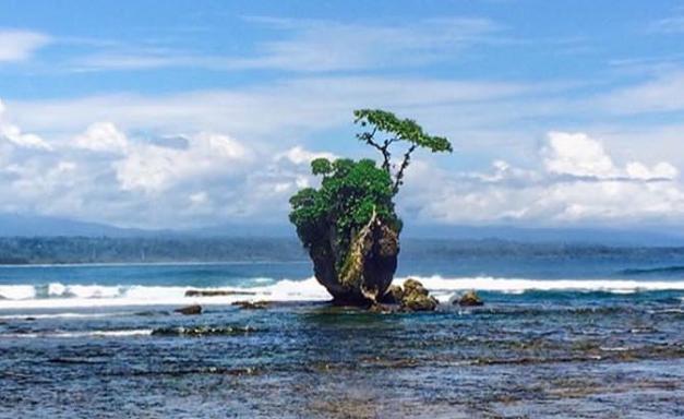 Wisata Alam di Bengkulu