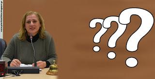 Δημοτικό Συμβούλιο Κατερίνης - Ερωτήσεις. (ΑΛΛΟΣ ΔΡΟΜΟΣ)