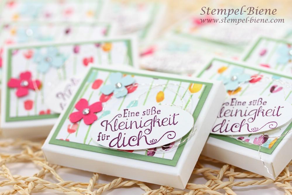 Stampin Up Sale a bration 2015, Gastgeschenke Stempelparty, Schokoladenverpackung, Farbenfrohe Verpackungen, Bestellungen Stampin up, Stempel-biene, Stampin Up Zarter Frühling