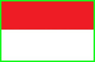 Sekilas Fakta Politik Negara Indonesia