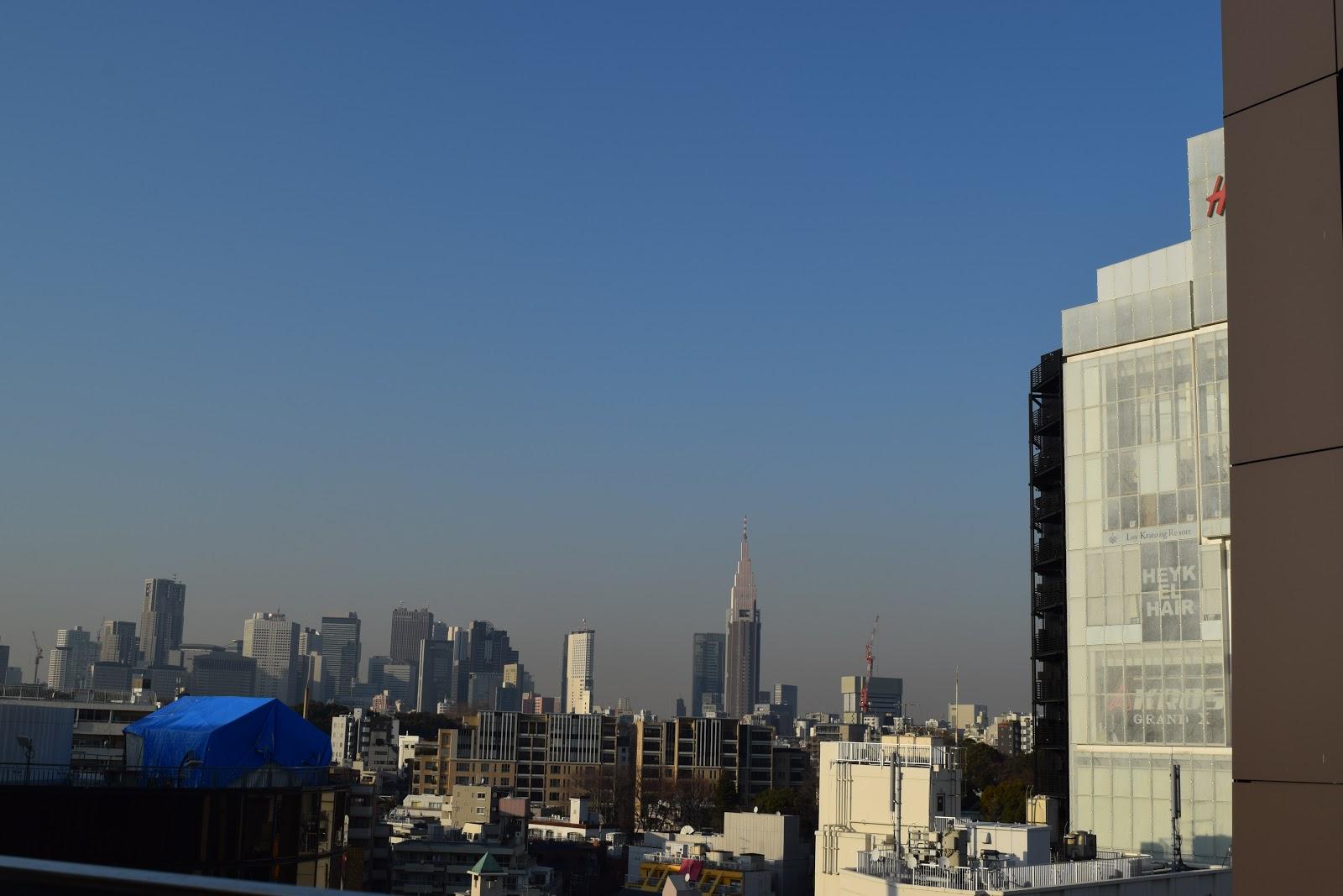 Tokyo skyline from the top of Tokyu plaza, Omotesando