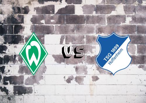 Werder Bremen vs Hoffenheim  Resumen