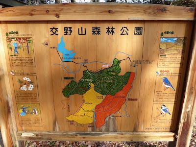 交野山森林公園 地図