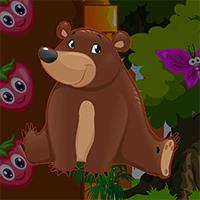 AvmGames Grizzly Bear Escape