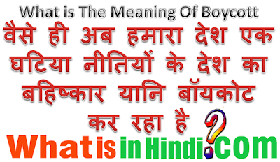 What is the meaning Boycott in Hindi