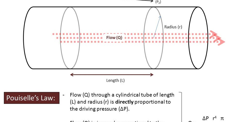The Pump and the Tubes Hemodynamics  Pouiselles Law