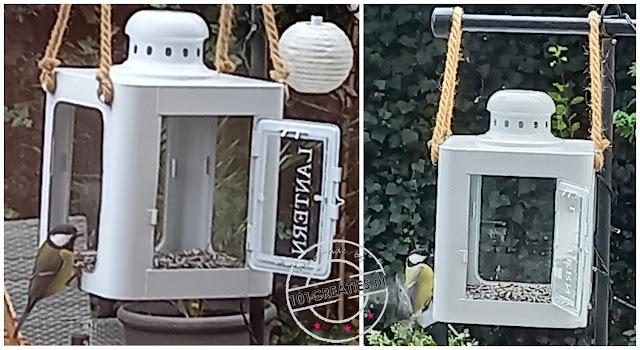 Vogelvoederhuisje in lantaarn