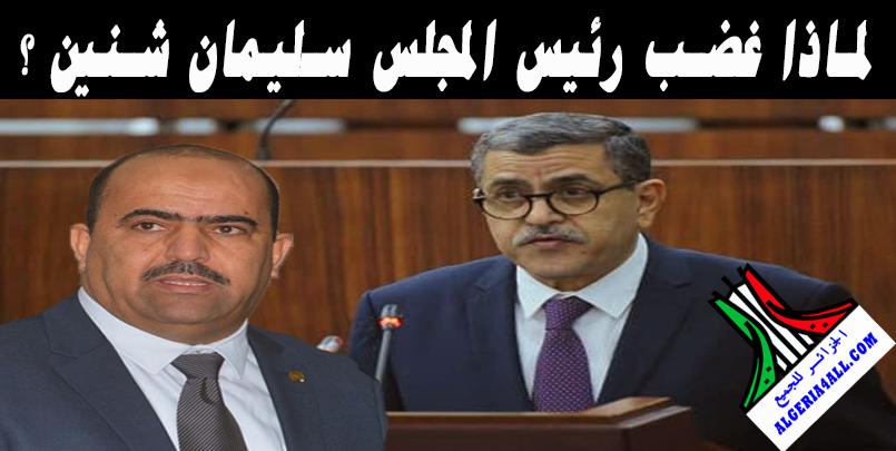 عبد العزيز جراد و سليمان شنين