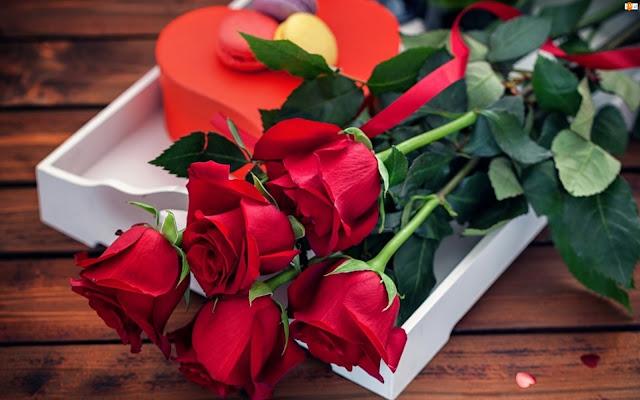 Розы и знаки зодиака: что кому дарить? http://prazdnichnymir.ru/