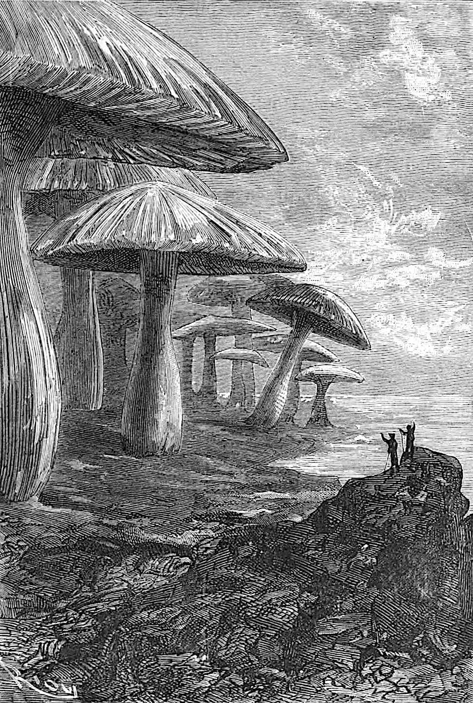 an Édouard Riou illustration for the 1800s Jules Verne book Journey to the Center of the Earth, with giant mushrooms
