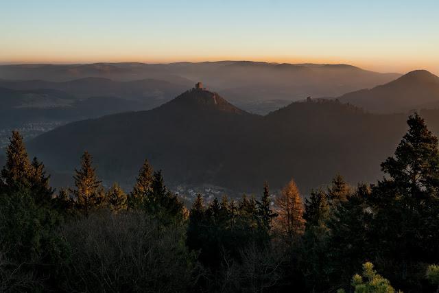 Richard-Löwenherz-Weg  Annweiler am Trifels  Wandern Südliche Weinstraße  Wanderung Pfälzerwald 04