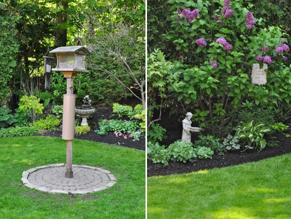 Three Dogs In A Garden A Bird Friendly Shade Garden