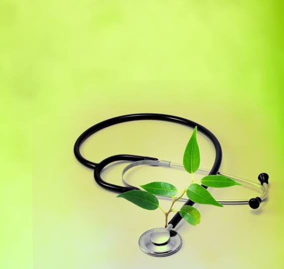 Naturopathy Doctors Recommend Health Tips