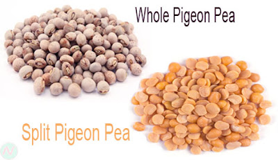 Pigeon pea,অড়হর ডাল