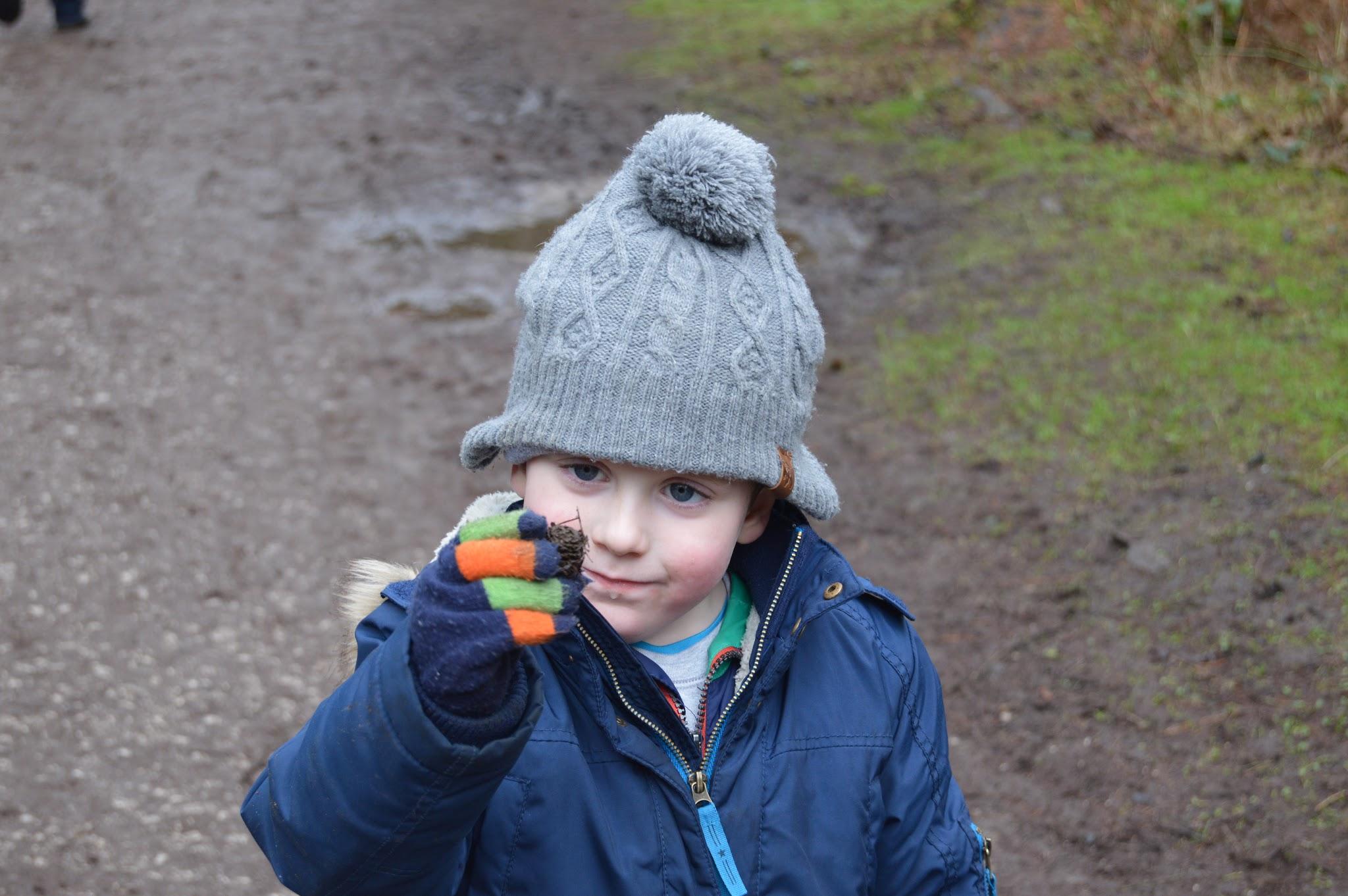 Boy holding a leaf