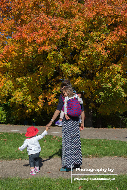 Image of the back of a tan skin Asian woman wearing a child on her back in a red and blue checked woven wrap carrier while holding the hand of a toddler who's walking beside her, wearing a Mama-made red sun hat. They're looking at a marvelous maple tree that is glowing orange, yellow, and green with the changing season.]