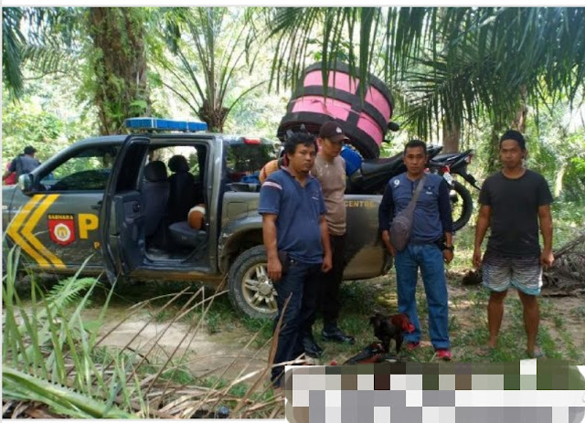 Polisi Grebeg Judi Sambung Ayam di Baebunta, 7 Motor Berhasil Disita