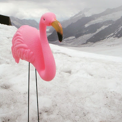 Travelling flamingo toy in Jungfraujoch