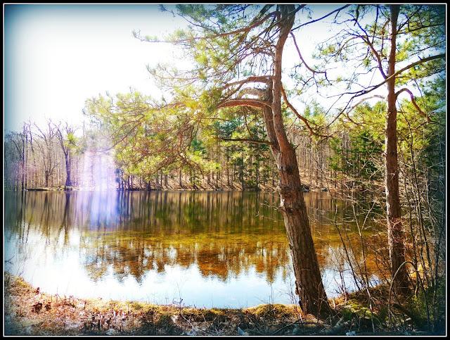 Lago del Monadnock State Park (NH)