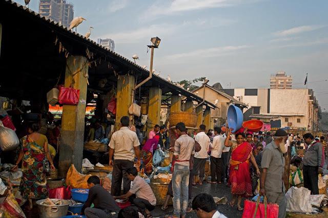 action, fisherfolk, fish traders, fish, baskets, sorting, sassoon docks, mumbai, incredible india, street,
