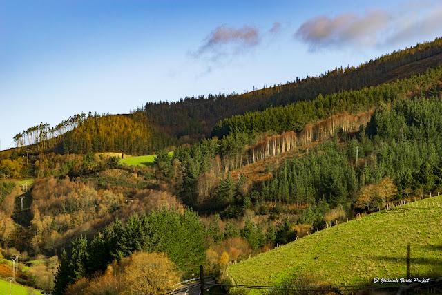 Bosques de Bres, Taramundi - Asturias