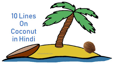 10 Lines On Coconut in Hindi