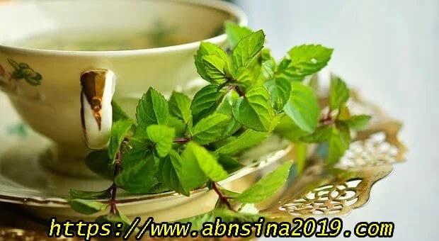 أفضل أنواع الإعشاب لعلاج المنزلية نزلات البرد و السعال
