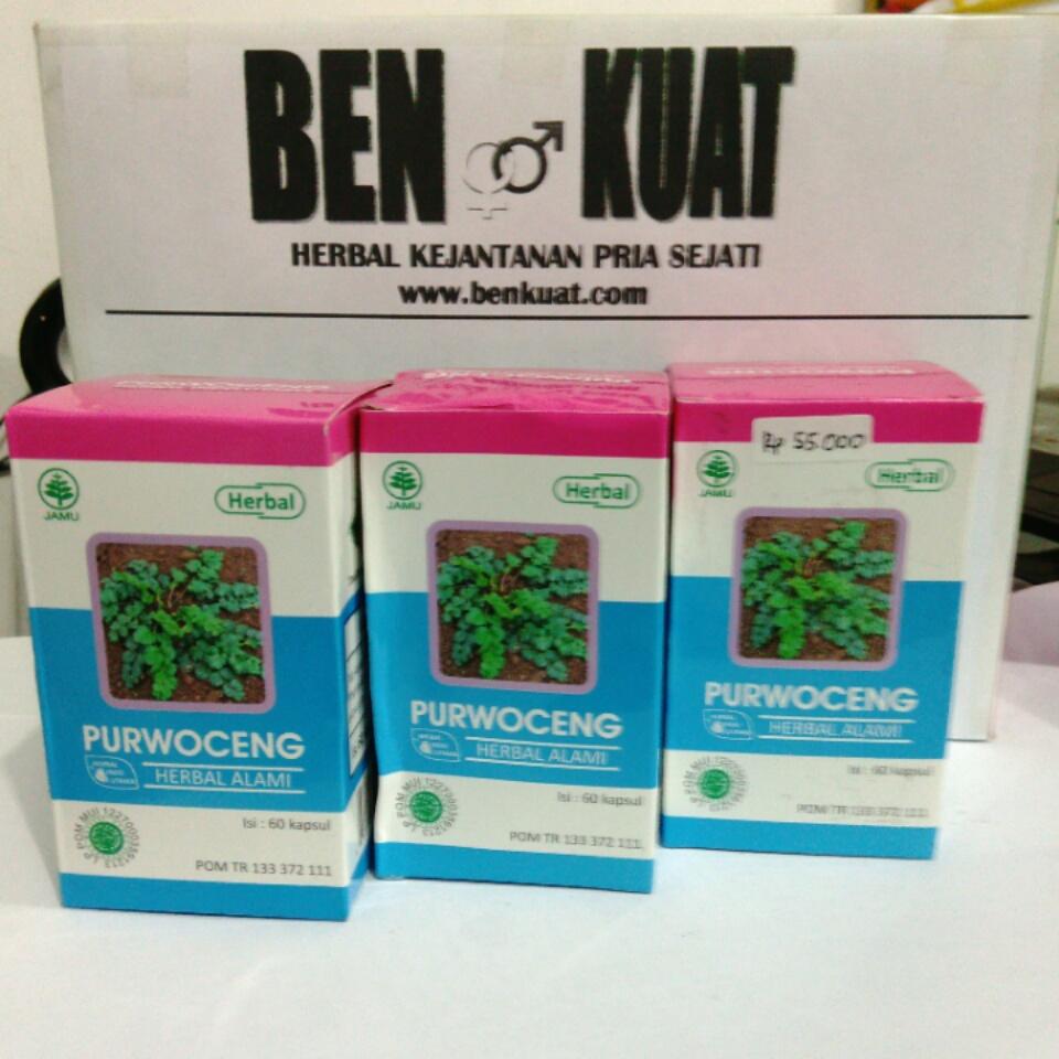 Herbal Obat Kuat Mojokerto Purwoceng Plus Oles Tanaman Sudah Dikenal Sebagai Tumbuhan Yang Mengandung Khasiat Stamina Terutama Pada Kaum Pria Mengkonsumsinya