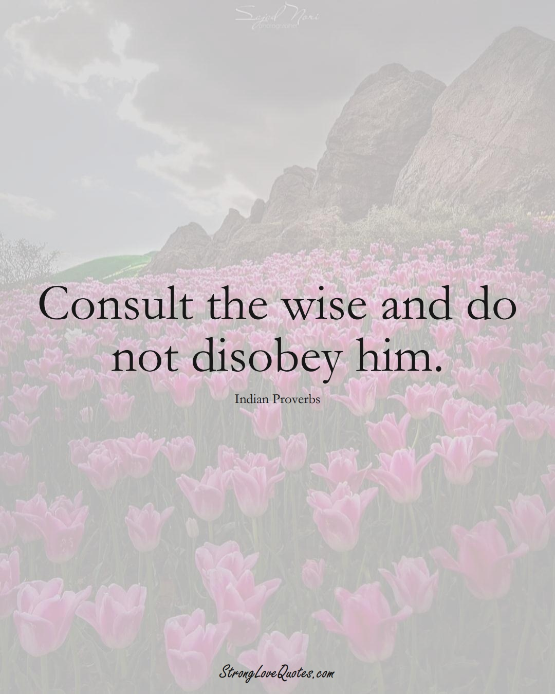 Consult the wise and do not disobey him. (Indian Sayings);  #AsianSayings