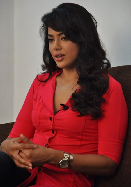 Actress Sameera Reddy Hot Stills in Red Dress Actress Trend