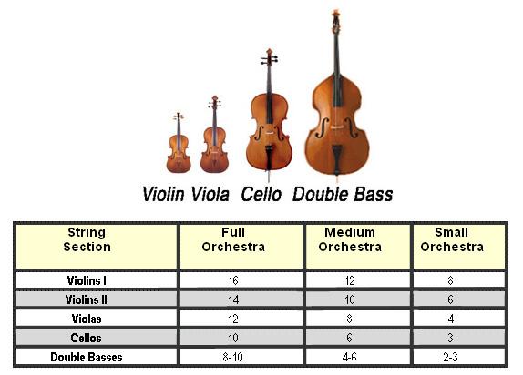 Mengenal String Section dalam Orkestra - Blog Fisella - 2 - Perbanding Ukuran Instrumen dalam String dan Jumlah Pemain String dalam Orkestra