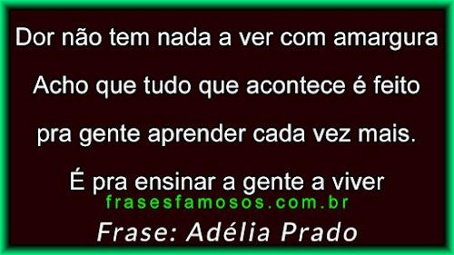 Dor não tem Nada a ver com Amargura - Frases Adélia Prado