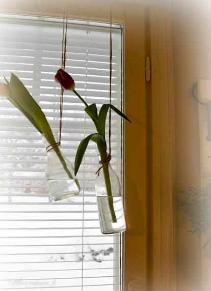 tulppaanit amaryllis maalaisromanttinen keittiö sisustus