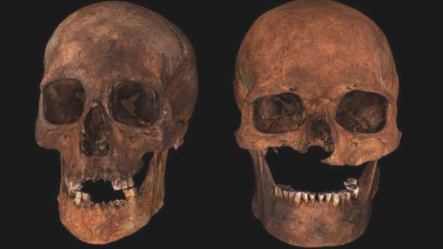 Grave with six skulls thought to be clan feud burial site