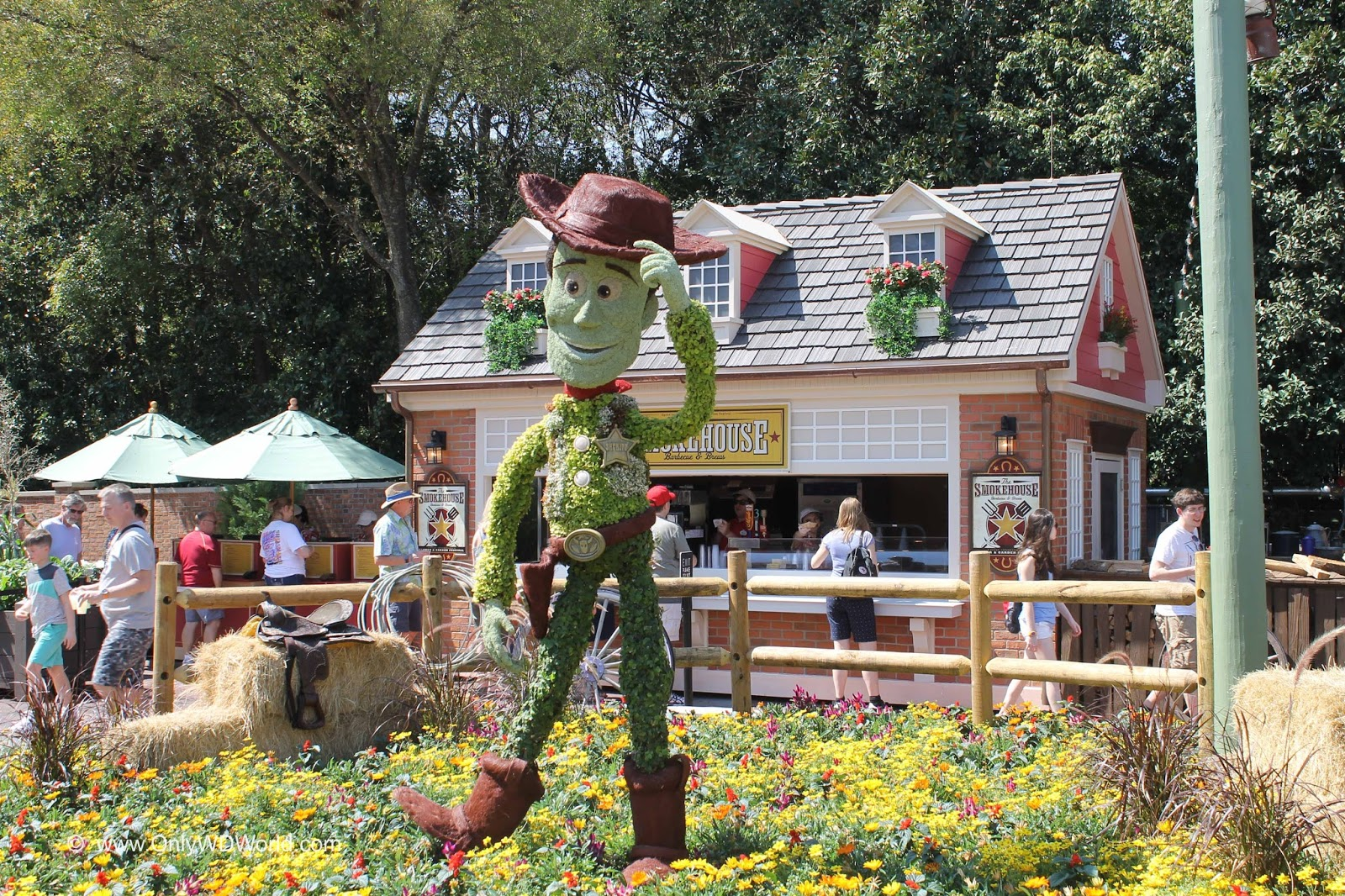 disney world blog discussing parks, resorts, discounts and dining