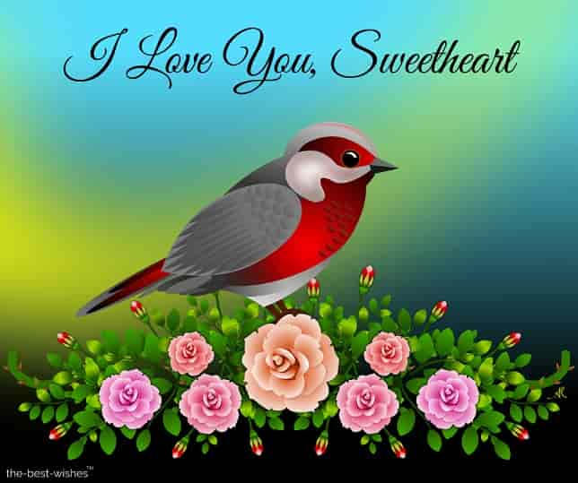 i love you sweetheart picture with bird