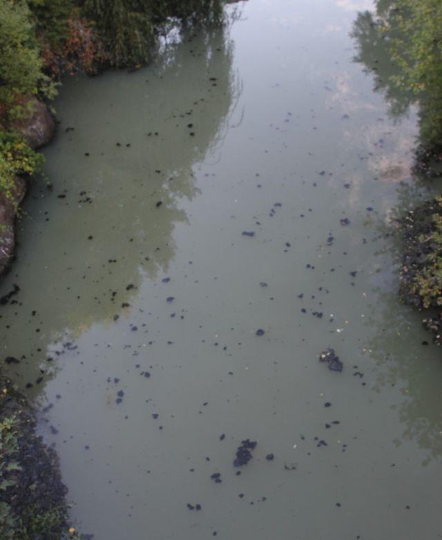 Río Damas
