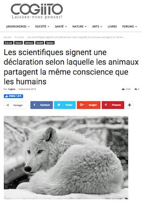 https://cogiito.com/a-la-une/les-scientifiques-signent-une-declaration-selon-laquelle-les-animaux-partagent-la-meme-conscience-que-les-humains/?fbclid=IwAR1kC2fLQ5-sGqq3ZlqQ5Shy_GXaHp6-wOGmgZI9I96bNvt8HE7Jm8-k_s8