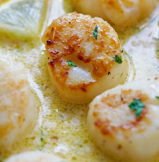 CREAMY GARLIC SCALLOPS #garlic #dinner #cheesecakes #appetizers #snacks