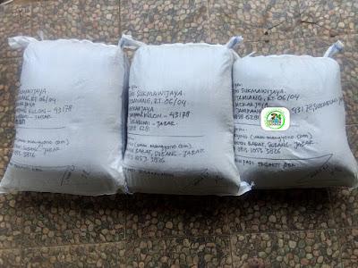 Benih padi yang dibeli   EMI SUKMAWIJAYA Sukabumi, Jabar.  (Setelah packing karung ).