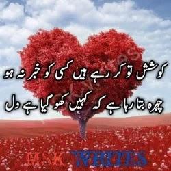 Dil Poetry In Urdu