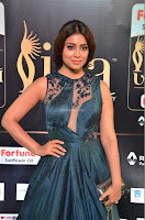 Shriya Saran in Beautiful Transparent Dark Gown IIFA Utsavam Awards 2017 072.JPG
